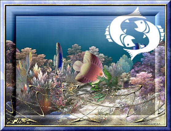 Pesci arte