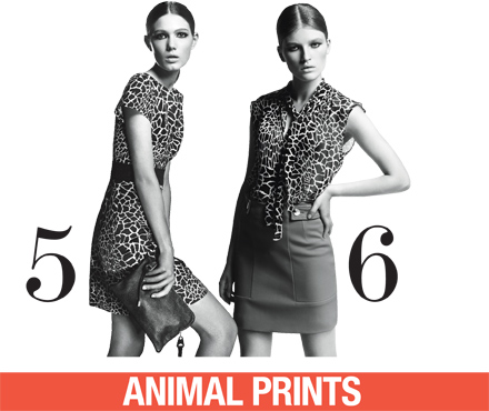 Max  Co moda abbigliamento Graphic primavera estate 2012-2