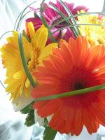 bouquet di margherite colorate