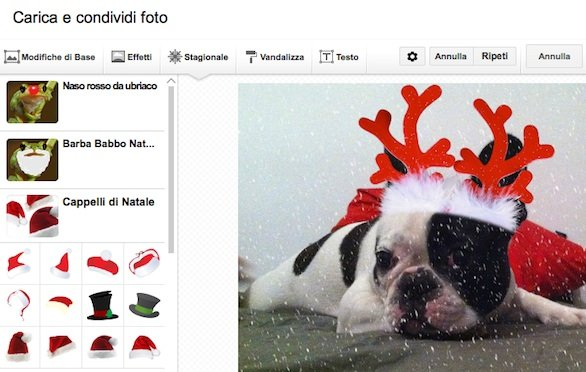 google-plus-kit-creativo