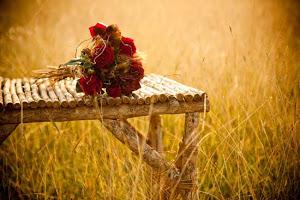 bouquet di rose rosse e spighe di grano