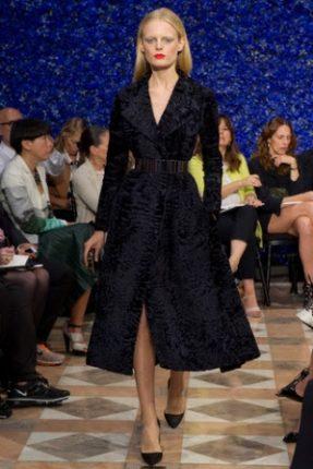 Christian Dior Pasarela 176314601 320x480