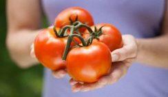 Pomodori-macchie-della-pelle