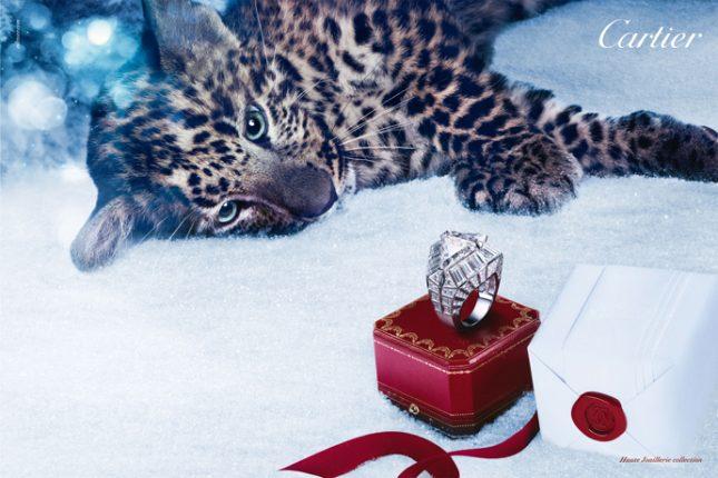 Cartier-collezione-annelli-Natale-2012