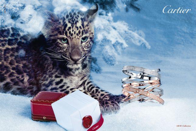 Cartier-collezione-braciali-Natale-2012