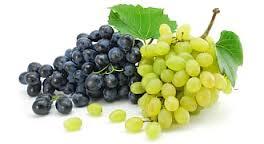 Semi di Uva nella lotta cancro intestinale