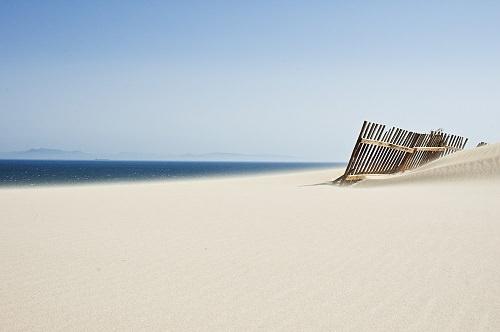 Bologna spiaggia Cadiz Spagna