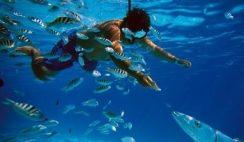 Migliori siti per immersioni nel mondo