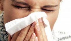 Muffa e raffreddore cosa hanno in comune