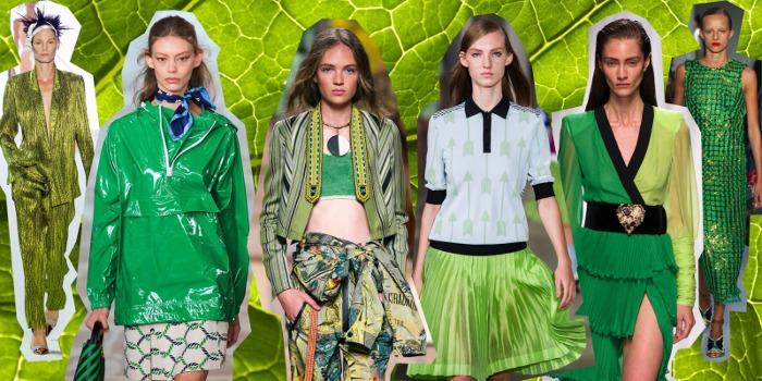 Colore del 2017 scelto da Pantone è il verde chiaro