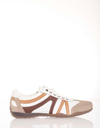 Sneakers uomo Pittarello scarpe autunno inverno